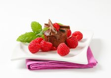 Mini chocolate cake with fresh raspberries. Mini chocolate cake served with fresh raspberries Stock Photos