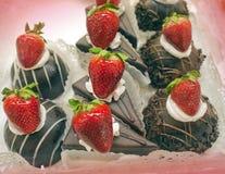 Mini chocolate cakes Royalty Free Stock Photos