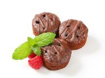 Mini chocolate cakes Stock Image