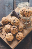 Mini chocolate chip cookies Royalty Free Stock Image