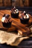 Mini Chocolate Cupcakes Imagen de archivo libre de regalías