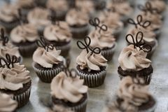 Mini Chocolate Cupcakes avec des hauts de forme de chocolat Images stock