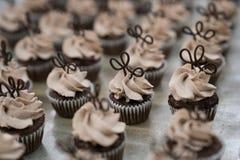 Mini Chocolate Cupcakes com chapéus de coco do chocolate Imagens de Stock