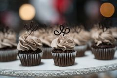 Mini Chocolate Cupcakes en la exhibición foto de archivo libre de regalías