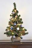 Mini Christmas träd Arkivfoto