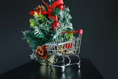 Christmas tree, coins in mini trolley isolated in dark black background. Mini Christmas tree decoration and coins in mini trolley in dark black background Stock Photo