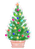 Mini Christmas tree in a flowerpot. On white background Royalty Free Stock Images