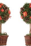 Mini christmas tree - frame. Over white Stock Images