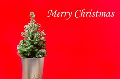 Mini Christmas tree on red stock images