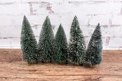 Mini Christmas Tree sulla pendenza Fotografia Stock
