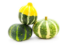 Mini colorful pumpkins  isolated on white Royalty Free Stock Photo