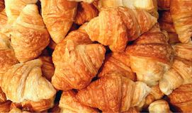 Mini croissant breads Stock Images