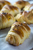 Mini croissants filled with cheese Royalty Free Stock Photography