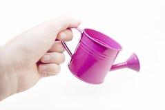 Mini-cubeta Foto de Stock