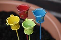 Mini cubeta dos plantadores Foto de Stock Royalty Free