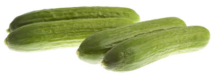 Mini Cucumbers, Isolated. On White stock photography
