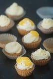 Mini cupcackes Royalty Free Stock Image