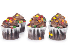 Mini Cupcakes fotografia stock