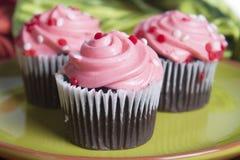 Mini Cupcakes royaltyfria bilder