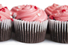 Mini Cupcakes foto de stock royalty free