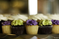 Mini Cupcakes. Decorated with purple and green frosting Royalty Free Stock Images