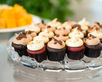 Mini cupcakes in glass tray Stock Photography