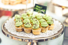 Mini cupcakes with green icing on a silver tray. A bunch of mini cupcakes with green icing and black sprinkles on a tray with a shallow depth of field. Green and Royalty Free Stock Photography