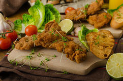 Mini cutlets - schnitzels Royalty Free Stock Image