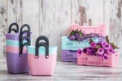 Mini Decorative Plastic Bags coloré pour l'usage de ménage Photographie stock libre de droits