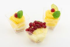 Mini dessert with cream and currant Stock Images