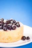 Mini dolce del mirtillo Fotografia Stock Libera da Diritti