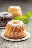 Mini dolci del bundt con lo zucchero a velo, primo piano immagine stock