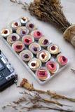 Mini Donuts com câmera e a folha seca imagem de stock