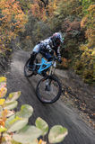 Mini Downhill rider on the race Stock Photography