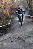 Mini Downhill rider on the race Royalty Free Stock Images