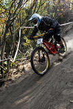 Mini Downhill rider on the race Stock Images