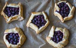 Mini empanadas de arándano Foto de archivo libre de regalías