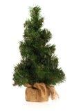Mini Fake Christmas Tree Lizenzfreies Stockbild