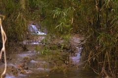 Mini Falls Photographie stock libre de droits
