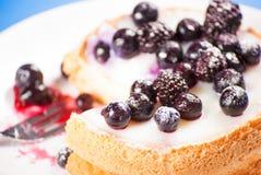 Mini fin de gâteau de myrtille  Photo libre de droits