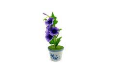 Mini fiore dell'argilla nel vaso immagine stock libera da diritti