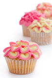 Mini flower cupcakes royalty free stock images