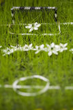 Mini flower football field Stock Photos