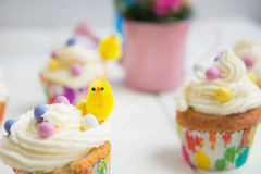 Mini Fluffy Chick on the Cupcake Royalty Free Stock Image