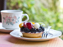 Mini fruit tart Stock Images