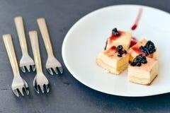 Mini gâteau au fromage de myrtilles Image libre de droits