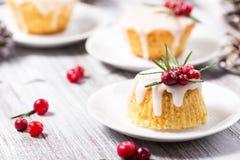 Mini gâteau de Noël avec le glaçage, les canneberges et le romarin de sucre Images libres de droits