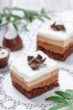 Mini gâteaux avec du chocolat, le cacao et les sucreries blancs sur la fin légère de fond  Photo stock