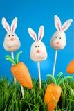 Bruits de gâteau de lapin images stock