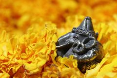 Mini Ganesha made from brass among of yellow marigold flower. Mini Ganesha made from brass among of yellow marigold flower, the son of Uma Devi god in Hinduism stock images